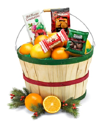 CHRISTMAS GROVE BASKET