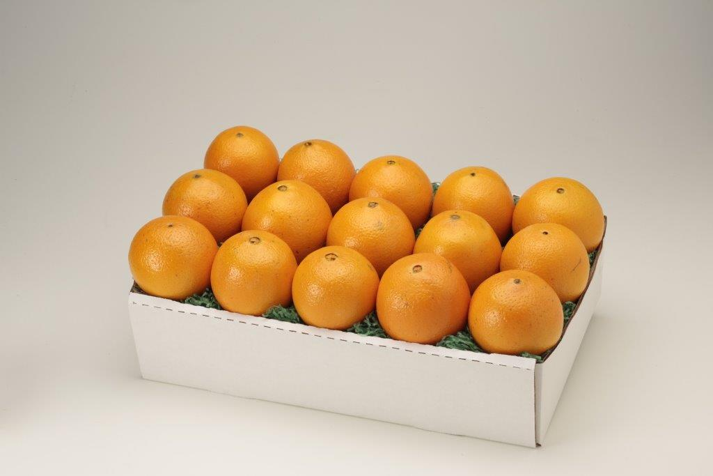 Red Navel Oranges