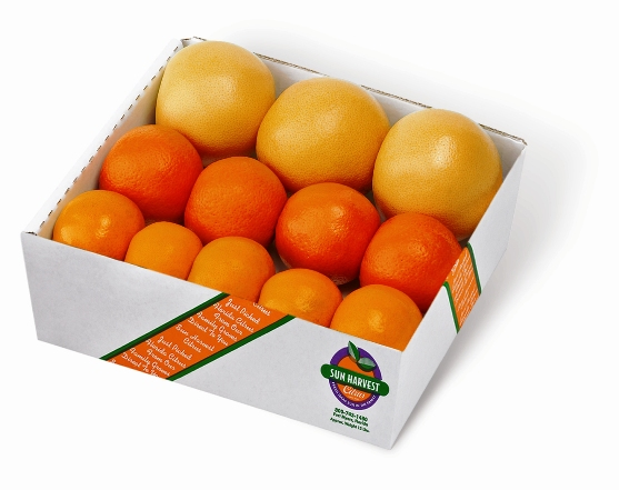 5 lb Junior Citrus Threesome