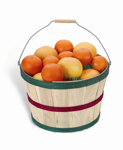 Traditional  Grove Basket