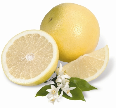 All White Grapefruit