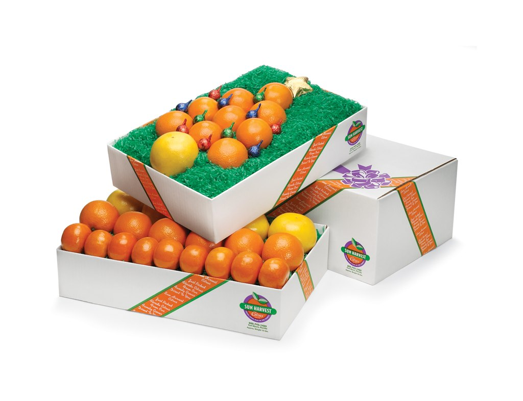 Merry Citrus Tree with 15 lbs three varieties of citrus added
