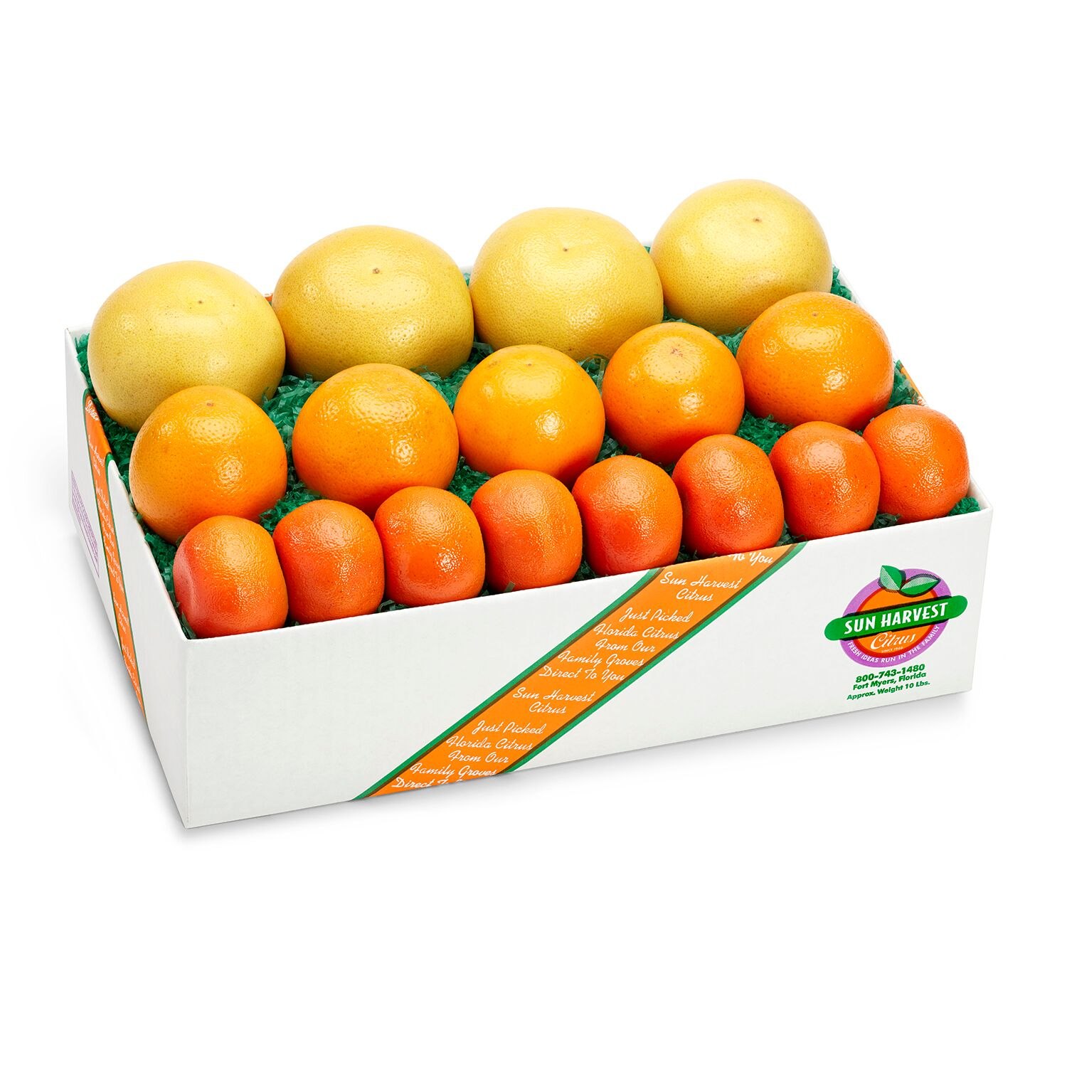 Original Citrus Threesome