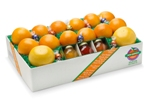 HOLIDAY HELPER PACK with extra citrus