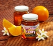 Orange Blossom Honey 8 oz